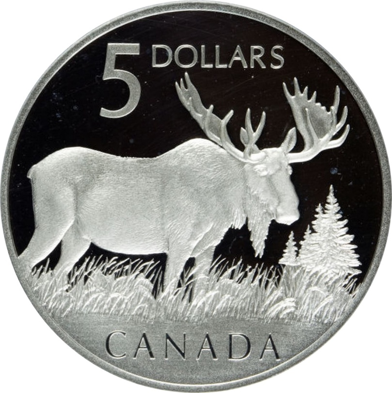 moosebucks